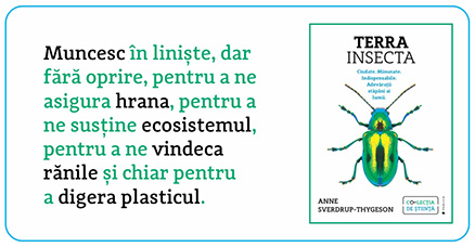 Terra Insecta Extraordinary insects Anne Svedrup-Thygenson