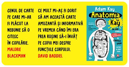 Anatomia lui Kay Kay's Anatomy Adam Kay